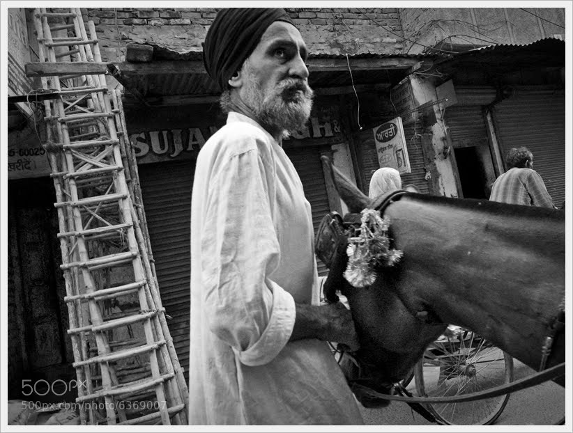 Photograph Man and Donkey by Simon Johnson on 500px