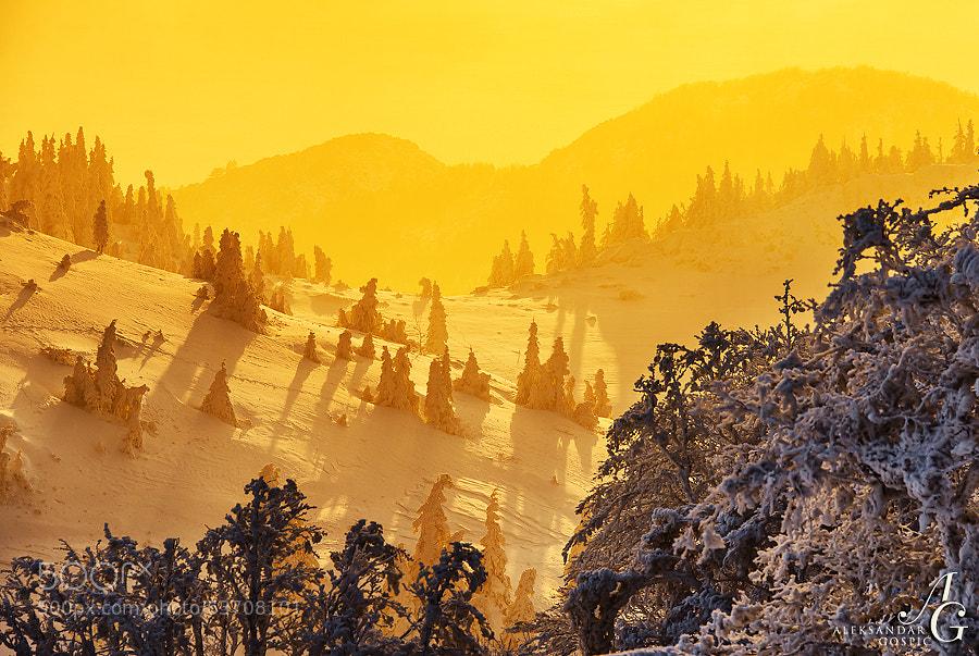 Last light splashed over the frozen sculptures in the wonderland park of Velebit mountain, as clouds finally broke