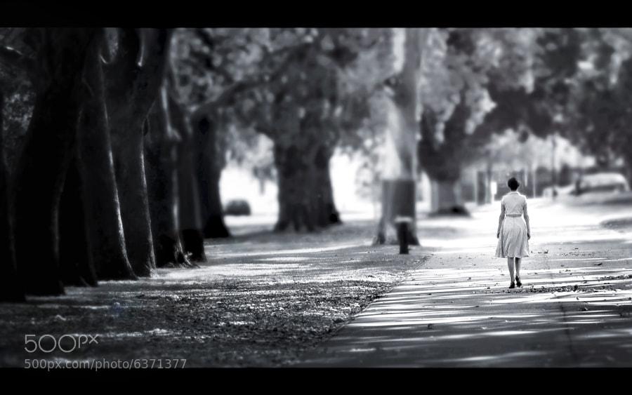 { Wandering... } by Thai Hoa Pham (ThaiHoaPham) on 500px.com