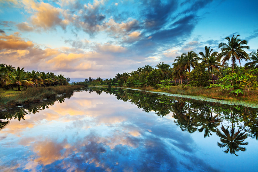 Palm Reflections by Dennis van de Water on 500px.com