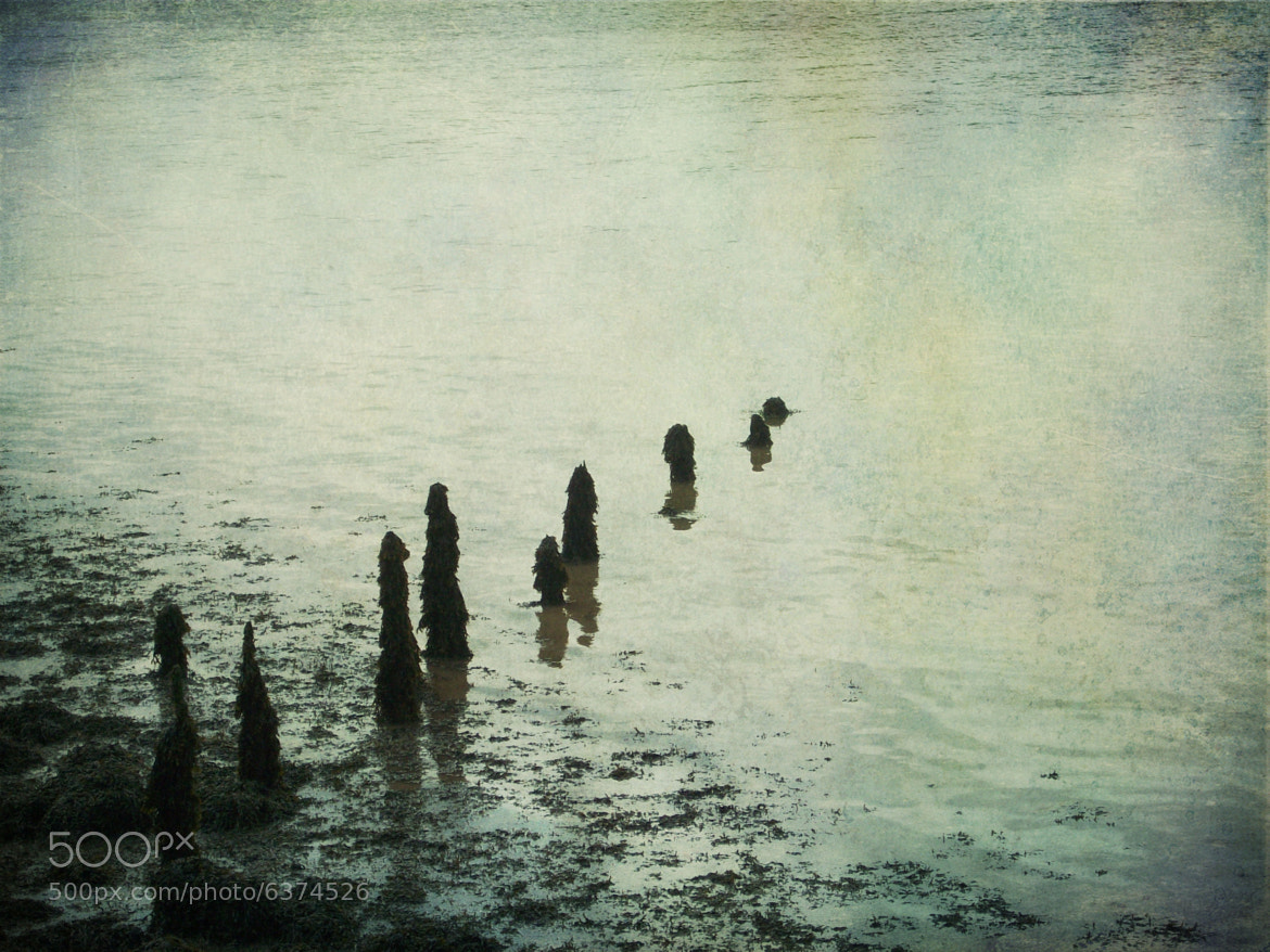 Photograph Loneliness by Sarah Couzens on 500px