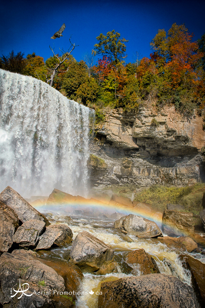 Photograph Webster Falls Rainbow by Robin Leworthy Wilson on 500px