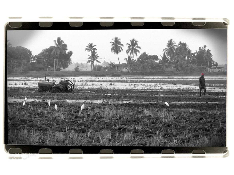 Photograph The Dependents by Venkitesh Harihara Sarma on 500px