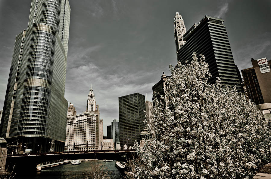 Photograph Chicago by Carlos Aledo on 500px