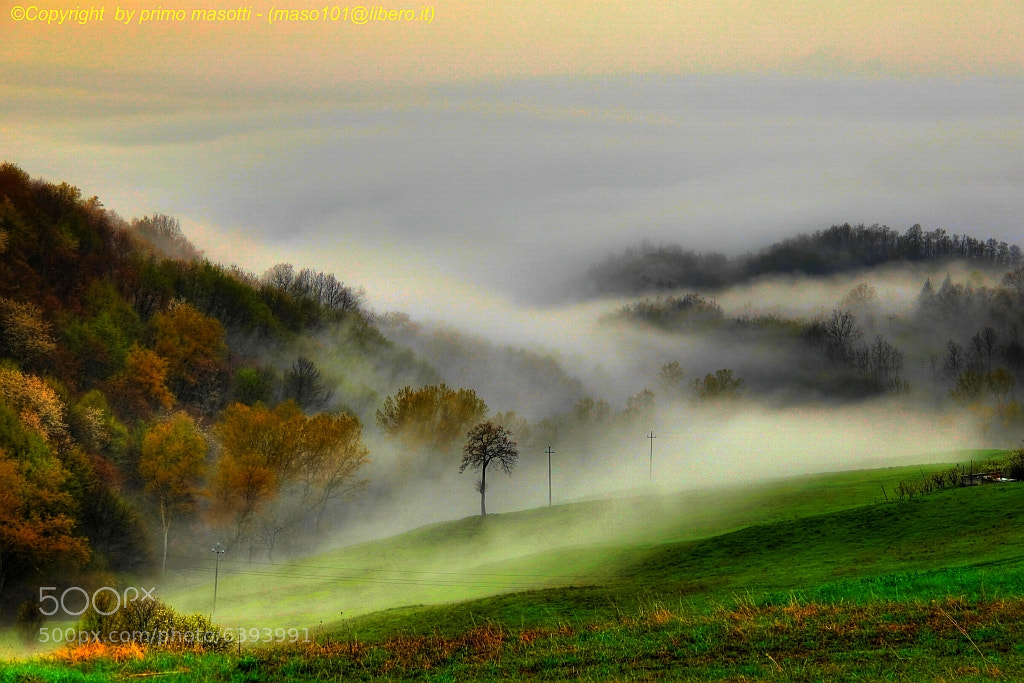 Photograph awakening, the breath of my land .. - DVD _0835_ Montecorone 15 by primo masotti on 500px