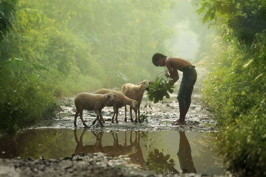 Photograph early morning by taufik sudjatnika on 500px