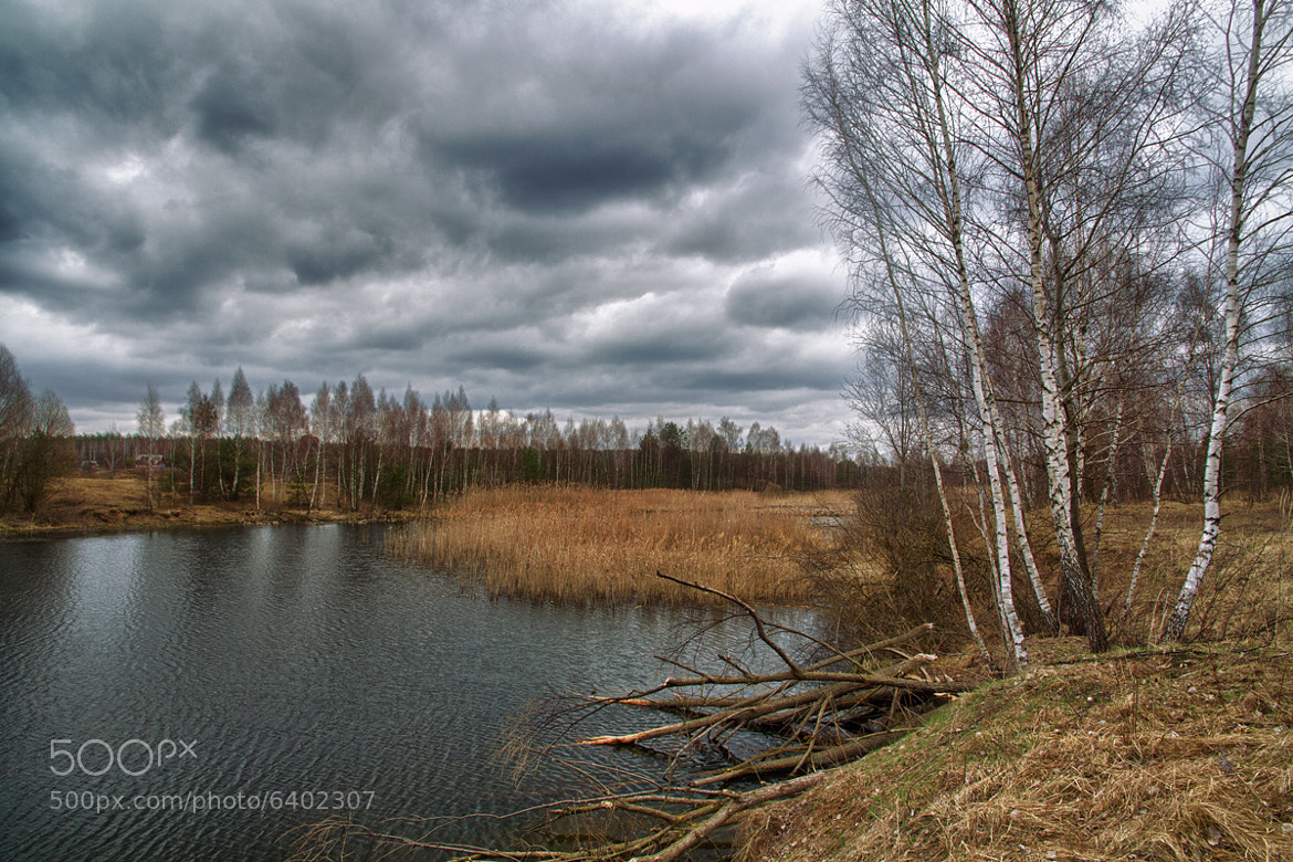 Photograph Tricks of the beaver by _udav_   on 500px