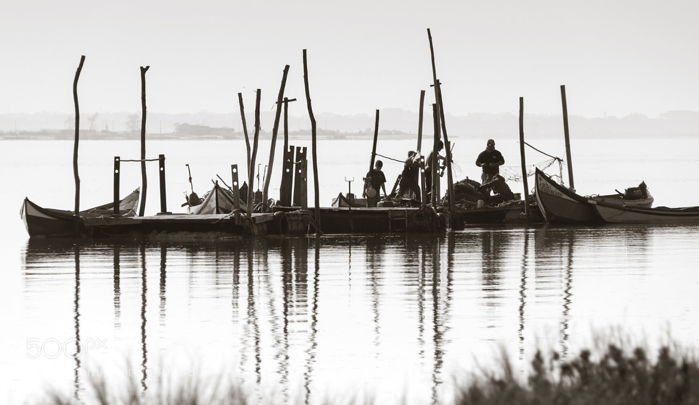 Photograph Floating by Fernando Correia da Silva on 500px