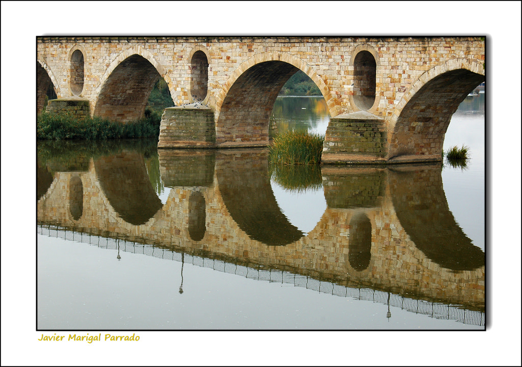 Photograph A orillas del Duero. by Javier Madrigal on 500px