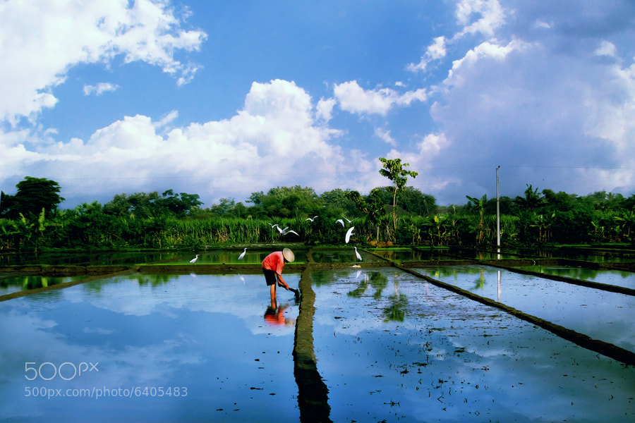 Photograph In this Morning by 3 Joko on 500px