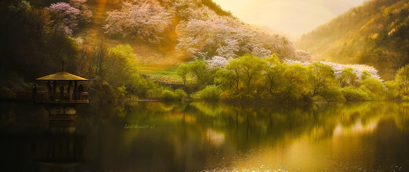 Photograph Springtime by Jaewoon U on 500px
