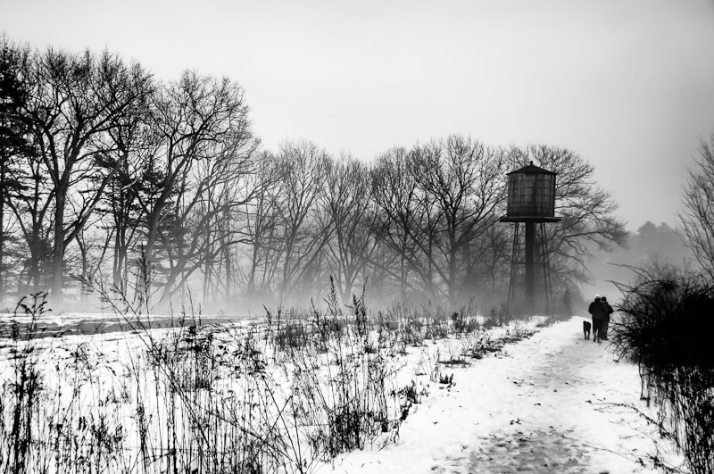 Photograph Walkers in a Snowy Field by Brian Burt on 500px