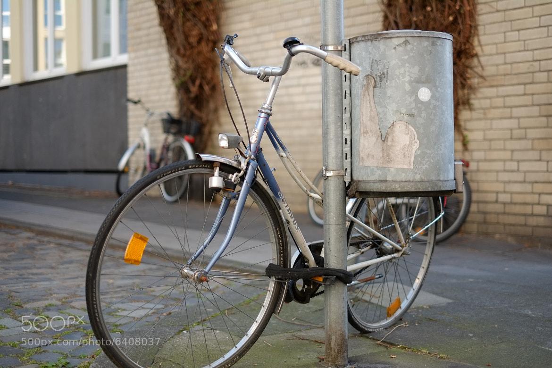Photograph Old Bike by David Hellmann on 500px