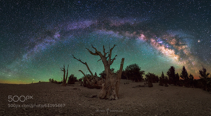 Photograph Awestruck By Beauty by Michael Shainblum on 500px