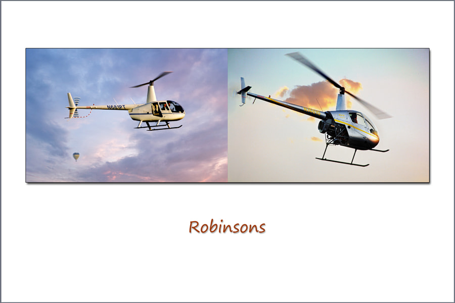 Diptych Series:  Robinsons