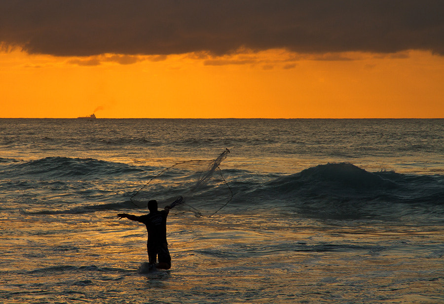 Photograph Casting his net by Ian  Damerell on 500px
