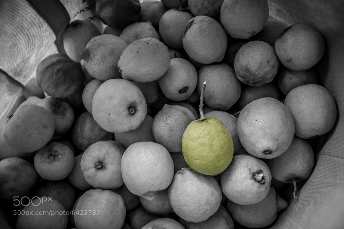 Photograph lemons by Andres Antonio on 500px