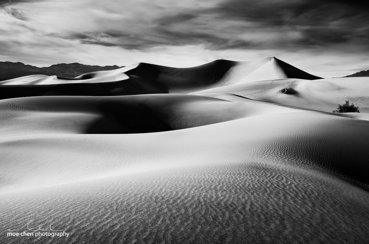 Photograph Mesquite Dunes Black and White by Moe Chen on 500px