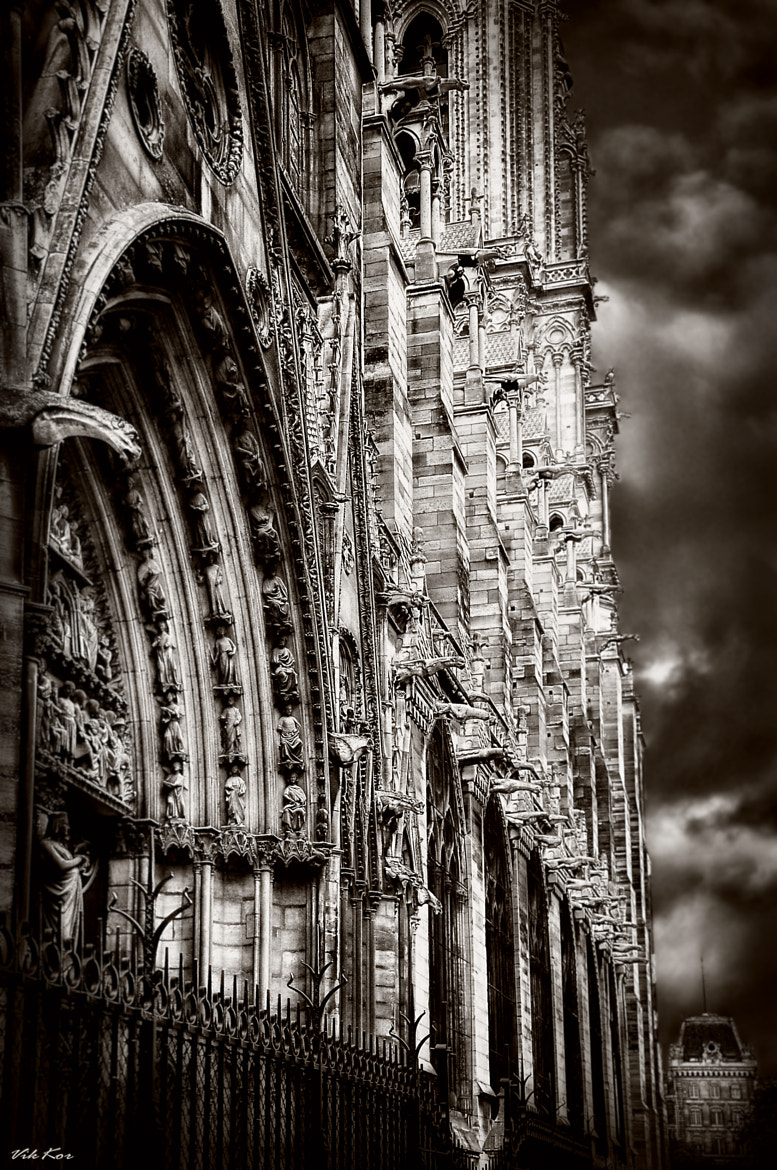Photograph Notre Dame de Paris II by Viktor Korostynski on 500px