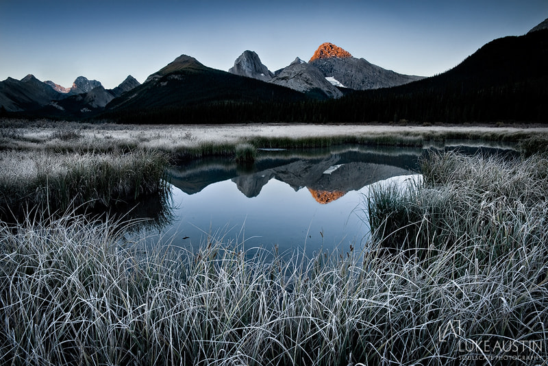Photograph First Frost by Luke Austin on 500px