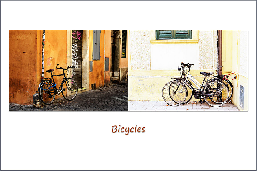 Diptych Series:  Locked Bicycles