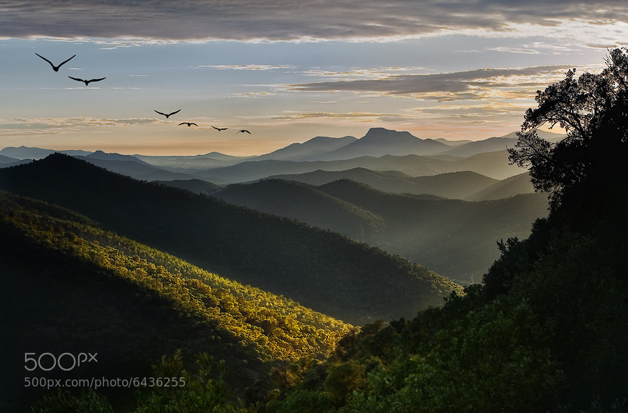Photograph Hills of South France by Daniel Metz on 500px