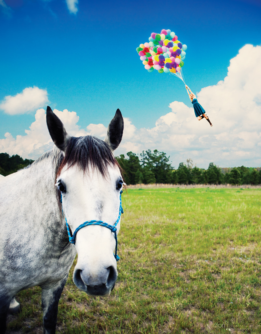 Photograph Horse Balloon Girl by Dorn Brothers on 500px