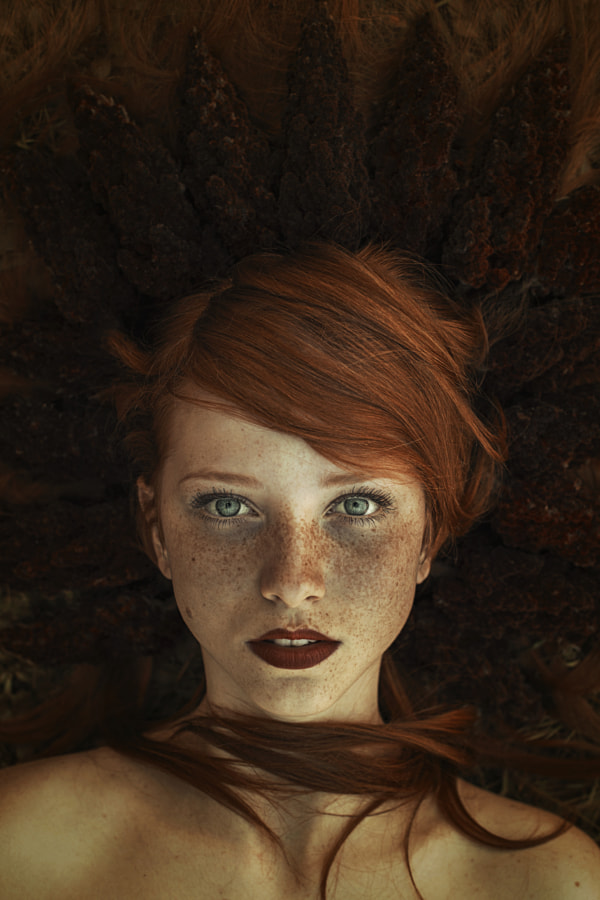 Photograph the red Queen by Maja Top?agi? on 500px