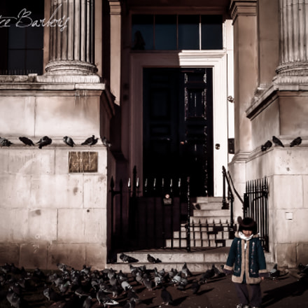 The Child and the all-pervading Pigeons