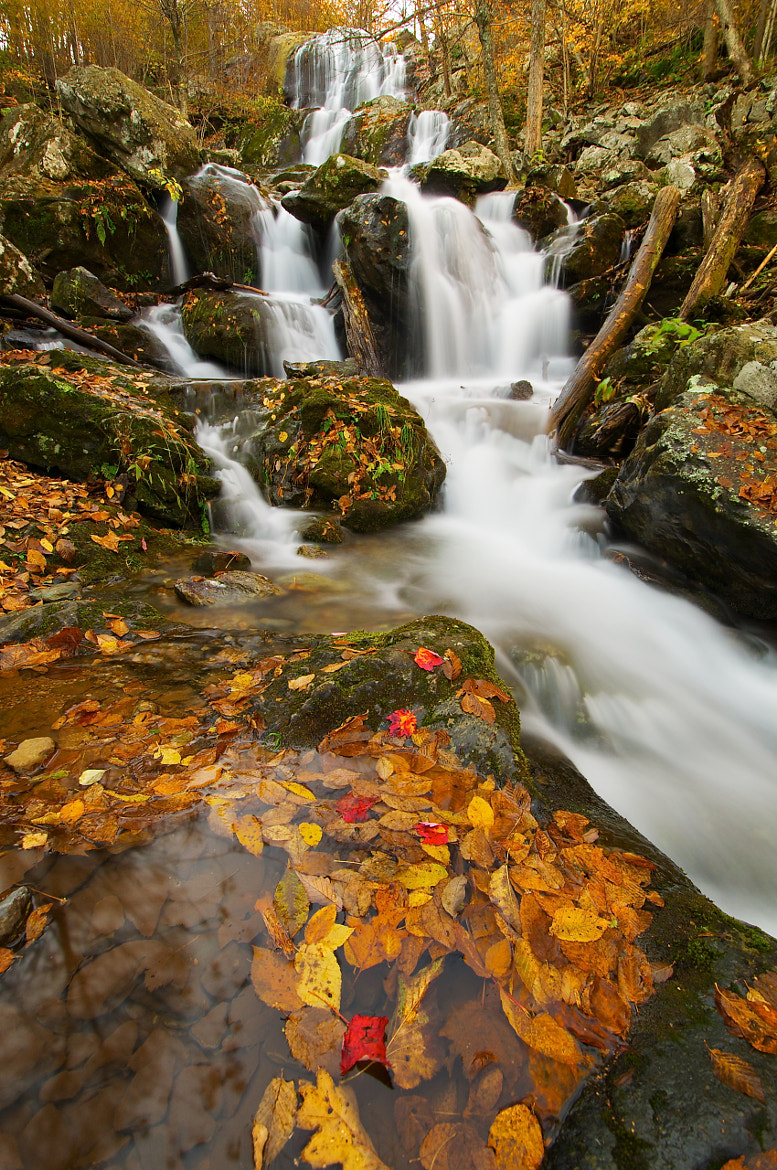 Photograph Autumn at Dark Hollow Falls by John Baggaley on 500px