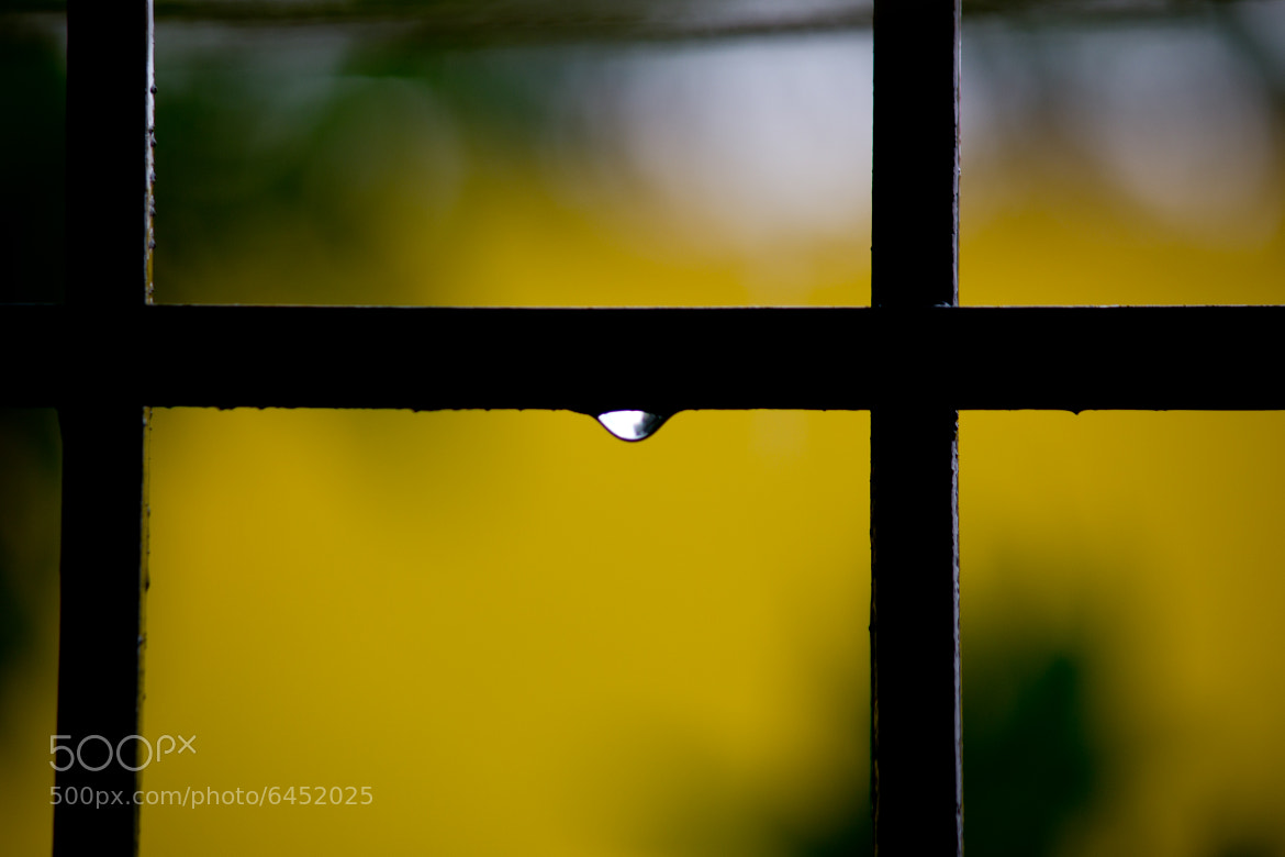 Photograph Every Drop Matters Inwhich ever way by Raghu Kiran Pusapati on 500px