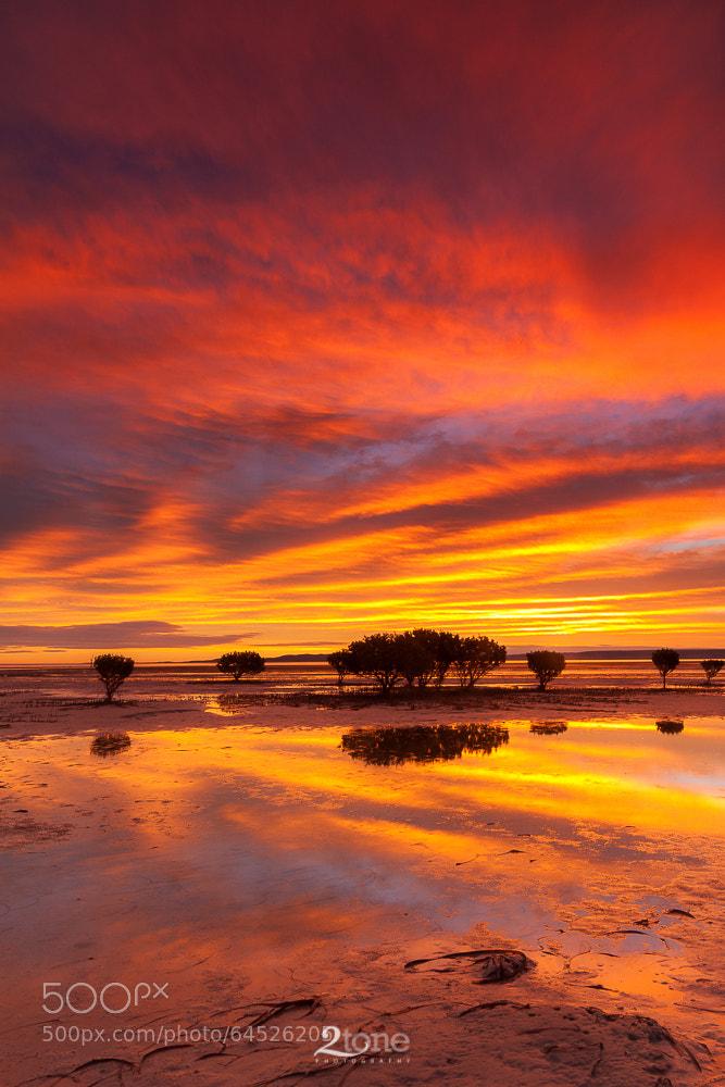 Photograph Miranda, South Australia by Joel Dawson on 500px