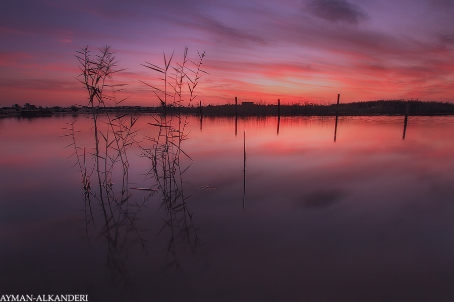 Photograph the lake by AYMAN ALKANDERI on 500px
