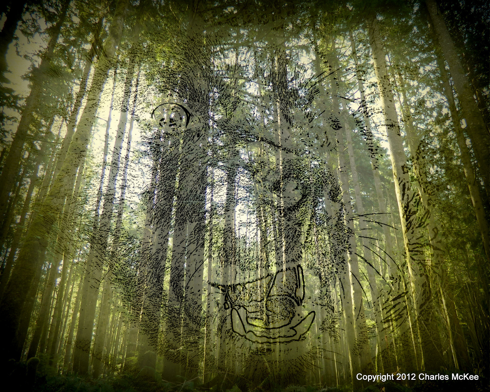 Photograph Forest Spirit by Charlie Mckee on 500px