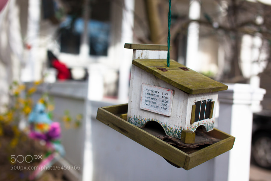 Bird's Coffee House