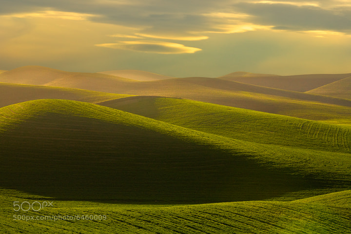 Photograph Rolling Hills Of The Palouse by Kevin McNeal on 500px
