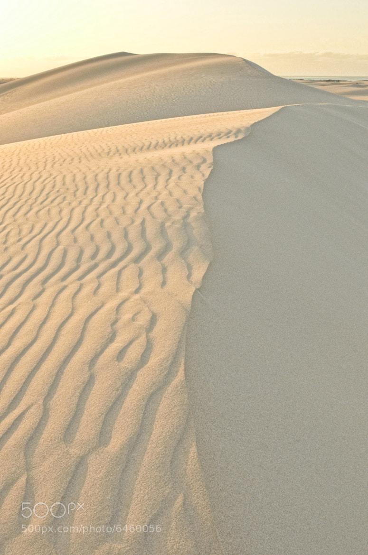 Photograph Sunrise on the Sand Dunes by Csilla Zelko on 500px