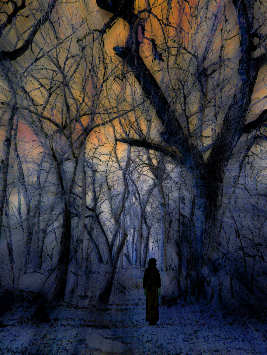 Photograph 963 by peter holme iii on 500px
