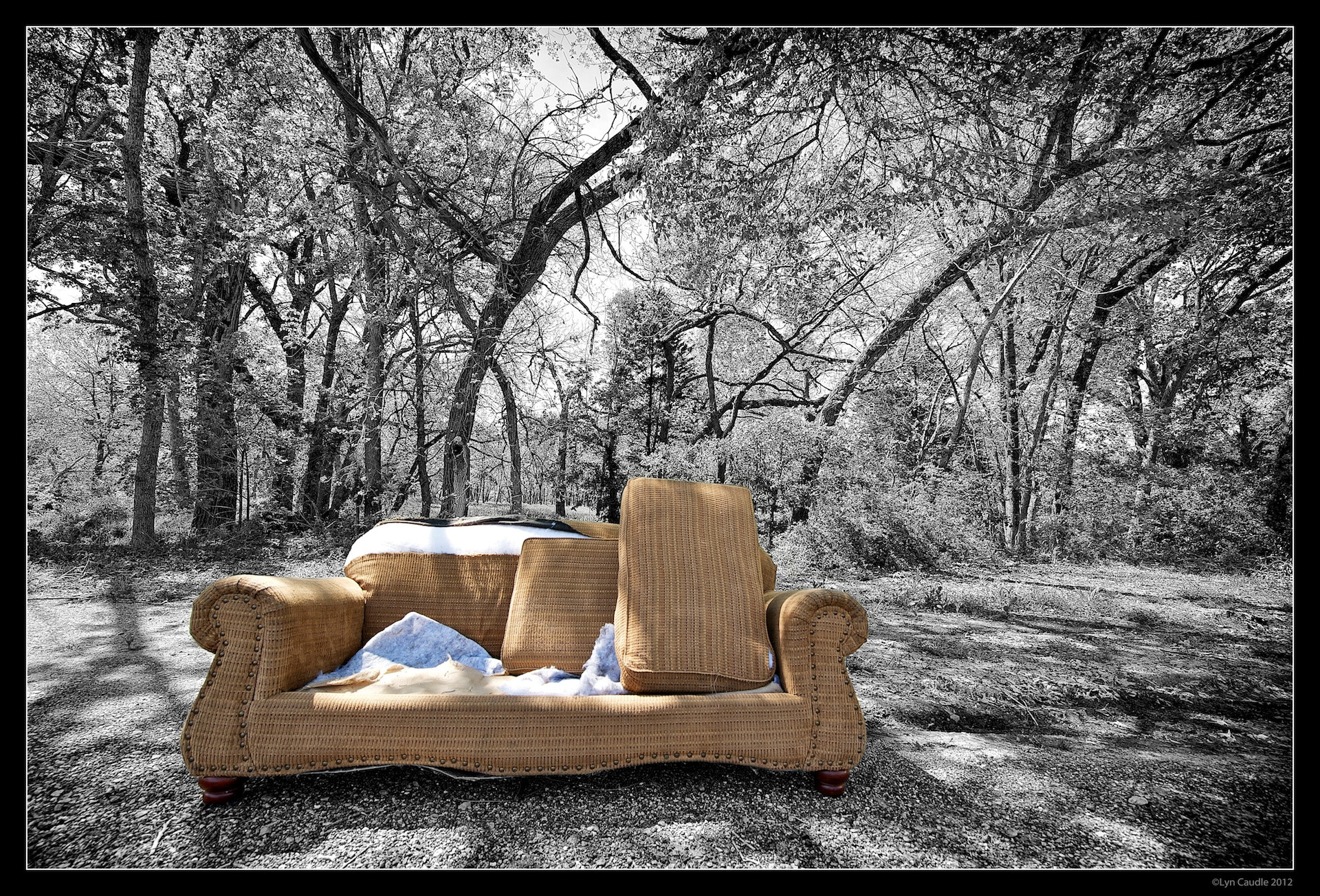Photograph Lonley Sofa by Lyn Caudle on 500px