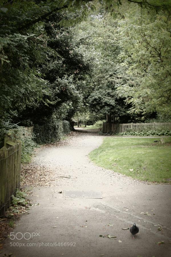 Holland Park, London, UK.