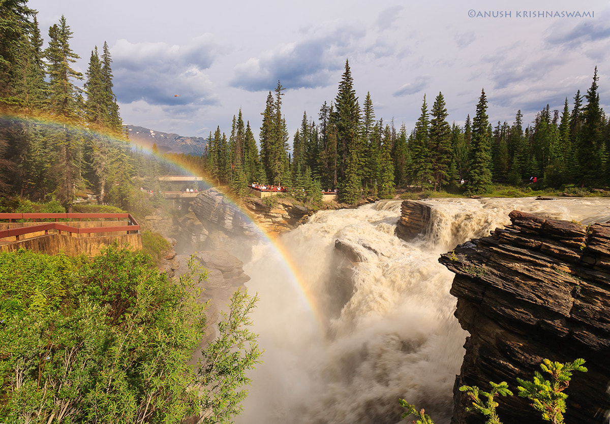Photograph Athabasca Falls, Jasper NP by Anush Krishnaswami on 500px