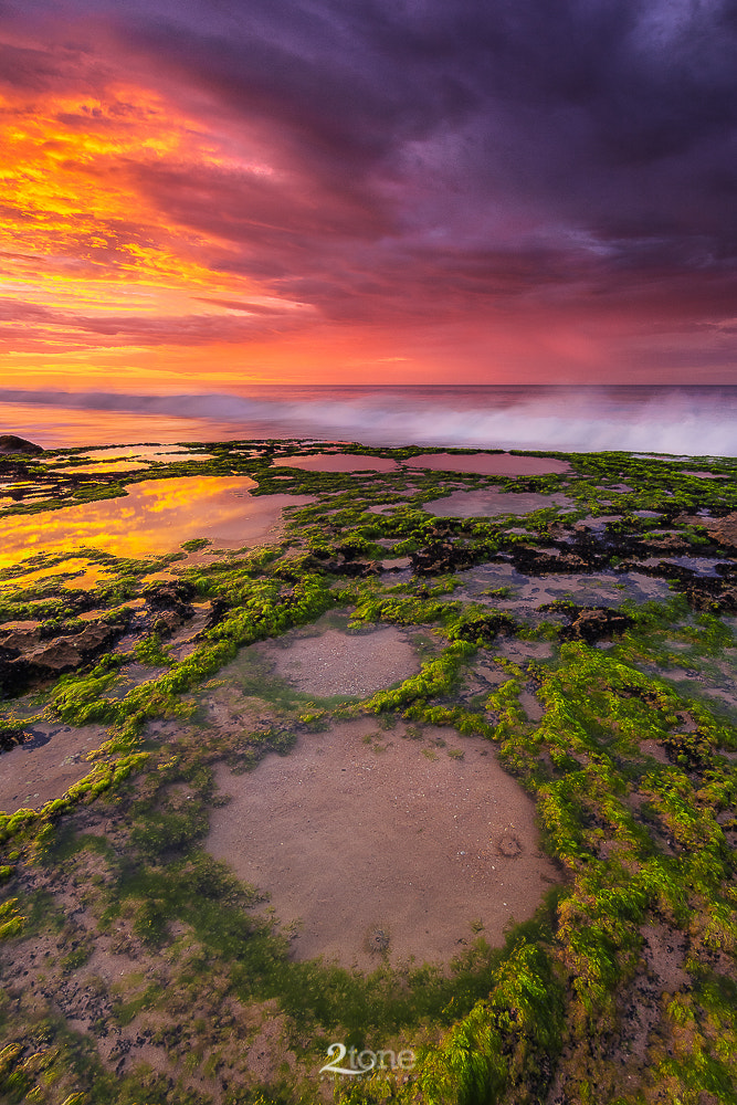 Photograph Knights Colour by Joel Dawson on 500px