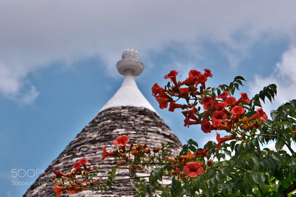 Photograph © Trullo in Alberobello by Renzo Re on 500px