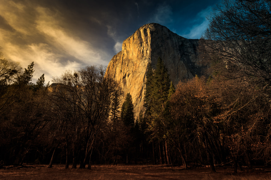Photograph Light & Shadow on El Capitan by Stephen Moehle on 500px