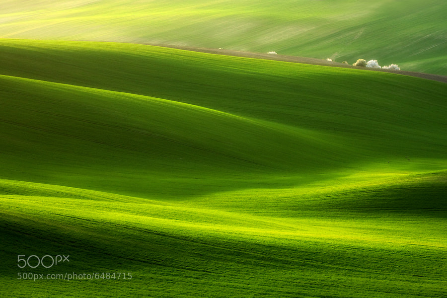 Photograph Fields by Marcin Sobas on 500px