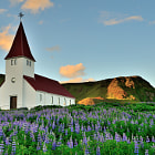 Beautiful little church surrounded by Lupine.  Join me on my exciting, affordable photo tours of Iceland in 2015. www.andreasjonesphotography.com/photography-tours.html
