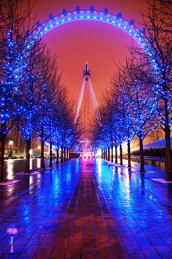Photograph The London Iris by Romain Matteï on 500px