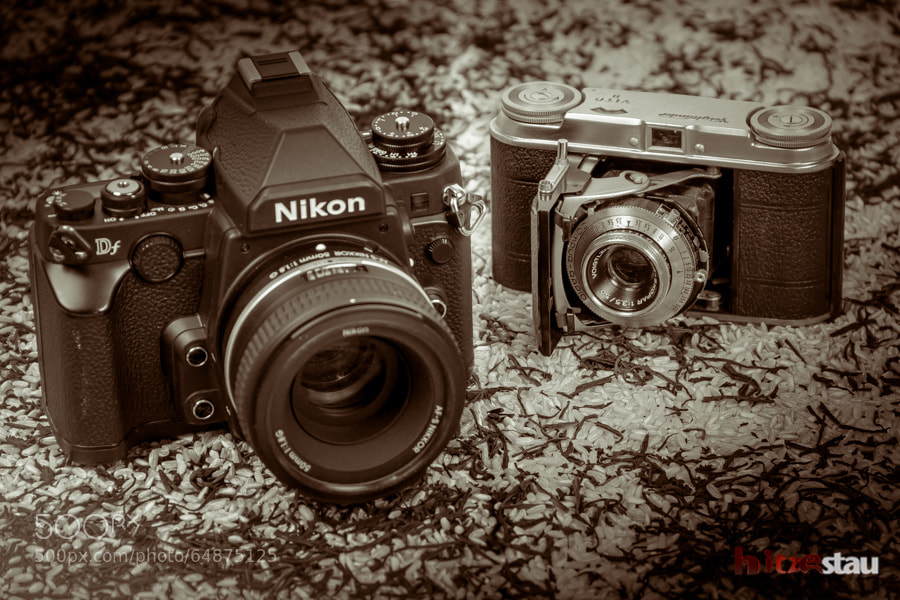 Photograph Vito II Voigtländer and Nikon Df by hitzestau on 500px