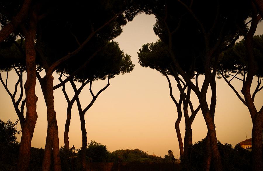 City-Rome-Sunset