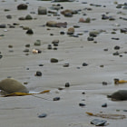 Rocks spread out over the California coast in Summerland.
